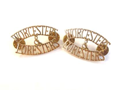 Worcester and Sherwood Foresters Collar Badges